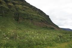 2008 – Fieldwork, Svínafell, Southeast Iceland